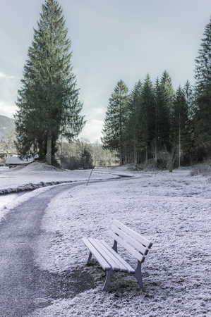 Frozen path and bench - Winter image with an alley and a wooden bench, covered with frost, near the coniferous forest, in Ehrwald, Austria Stock Photo