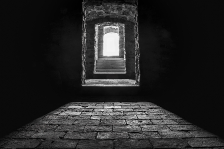 Black and white image of the stairs and the entrance from a basement, seen from inside