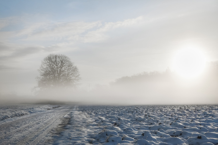 Dreamy winter landscape with a snowy country road and field covered by a cold fog, at sunrise, on a February morning, near Schwabisch Hall, Germany.