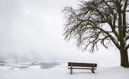 Contemplative winter scenery with an aged wooden bench under a big leafless tree surrounded by snow, on a hilltop, while overcast sky, in Germany. Stock Photo