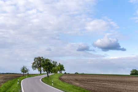 Empty road passing through agricultural fields under the blue sky with white clouds