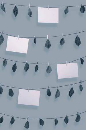 Blank paper notes and dried leaves hanging on clotheslines with wooden clips. Paper sheet frames in blue monochrome color. Environment concept. Nature