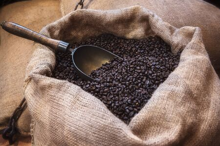 Roasted black coffee beans and an old scoop, in a jute sack. Vintage image of coffee beans in jute packaging. Open jute bag with coffee beans.