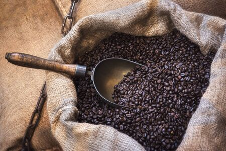 Freshly roasted coffee beans with a metal scoop, in jute sacks. Close-up with an open coffee bag. Coffee shop context. Arabic coffee beans in bag.
