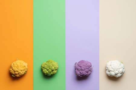 Organic cauliflowers on colorful stripes of background. A mix of cauliflower heads collage. Above view of fresh vegetables. Types of cauliflower.