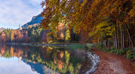 Autumn scenery near the lake Alpsee in the bavarian alps, near the german city Fussen. Panorama with the bavarian forest in autumn colors Reklamní fotografie