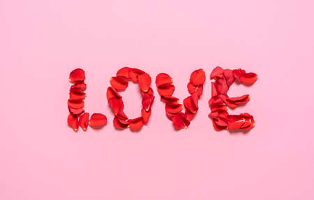 Love written with red rose petals, isolated on pink background. Top view with rose petal love word. Valentine's day concept. Flower petals letters.