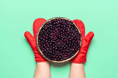 Homemade blueberry pie isolated on green Imagens