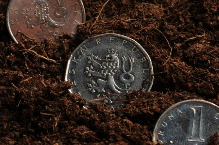 Coins of the Czech Republic sown in the ground