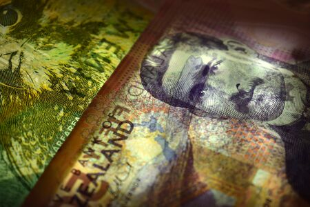 Close up of the New Zealand currency in transparency