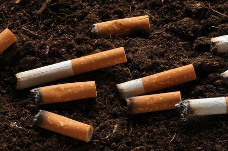 Cigarette butts on the ground