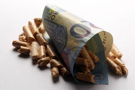 Close up on Euro banknote and wood pellets