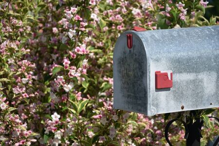 Letterbox with flowers in spring