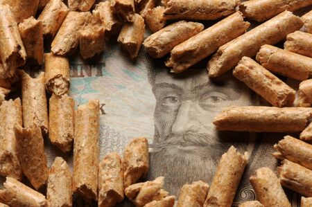 Close up on hungarian currency and wood pellets