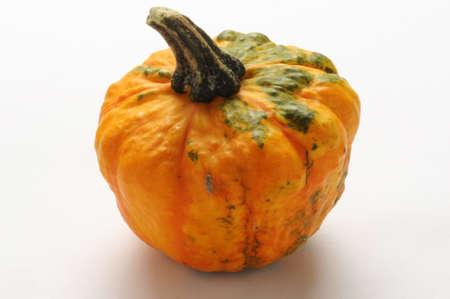 Decorative pumpkin on white background.