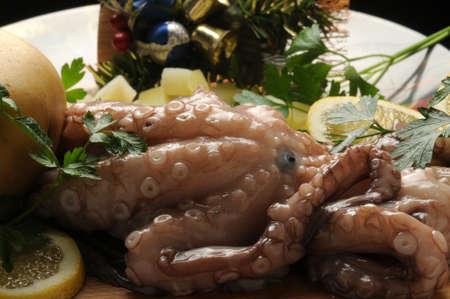 Close up on fresh octopus Standard-Bild