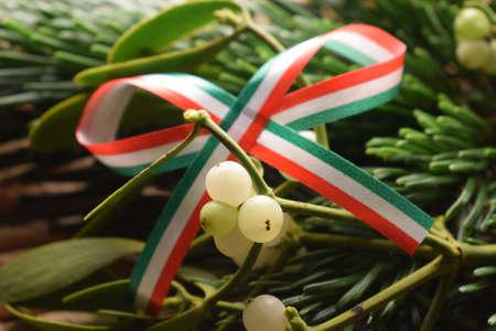 Close up of a mistletoe branch with flag Standard-Bild