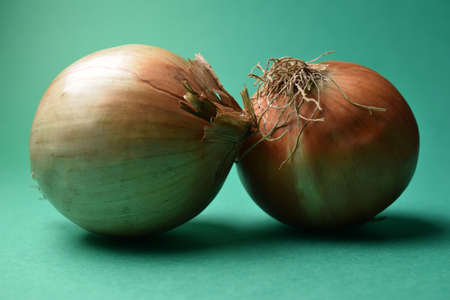 Raw onions on a green background