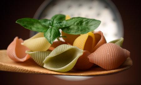 Close up on raw seashells Standard-Bild