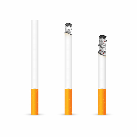 Cigarette with and without ash isolated on white background. Realistic smoldering cigarette in different stages of burn. Vector