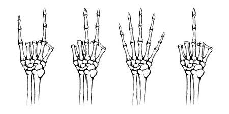 Hände des Skeletts mit verschiedenen Gesten. Vektorgrafik