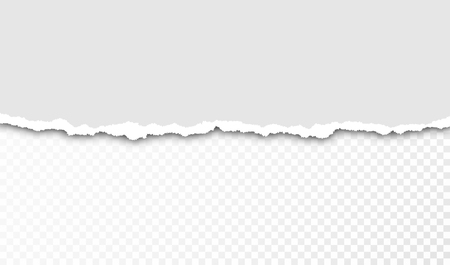 Torn paper with ripped edges and transparent space for you design. Paper texture with ripped edges and shadow. Horizontal banner template. Vector