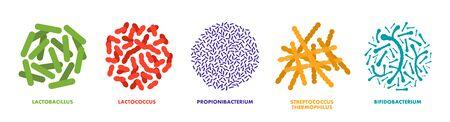 Probiotics, lactic acid bacteria. Good bacteria and microorganisms for human health. Microscopic probiotics, good bacterial flora. Vector