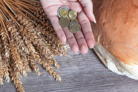 Womens hands hold Kazakhstan tenge coins over a table with wheat ears and bread. Bread products in Kazakhstan and Kazakhstan wheat.