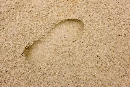 travler: Footprints going over a sand Stock Photo
