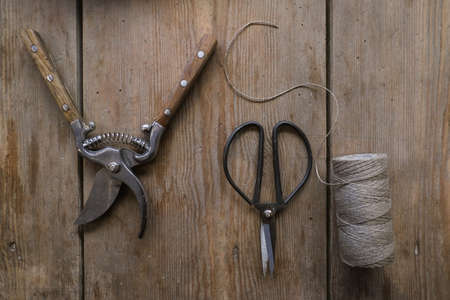 On a table are vintage scissors prunner and a spool of thread