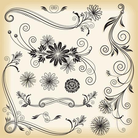 ornaments vector: Set di elementi floreali progettazione, illustrazione vettoriale strati. Vettoriali