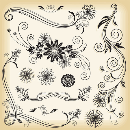 vector decoration: Set of floral elements design, vector illustration layered.  Illustration