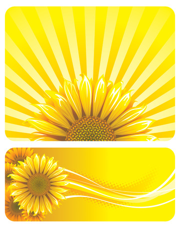 a sunflower: Sunflower and yellow background design. Vector layered. Illustration