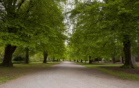 botanic: The Botanic Garden  Christchurch
