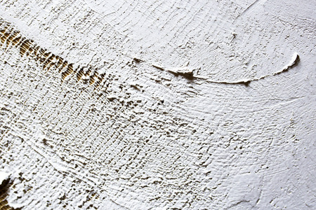 wash of white primer of the canvas. texture for artists