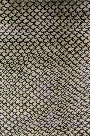 the texture of the metal garden grid.