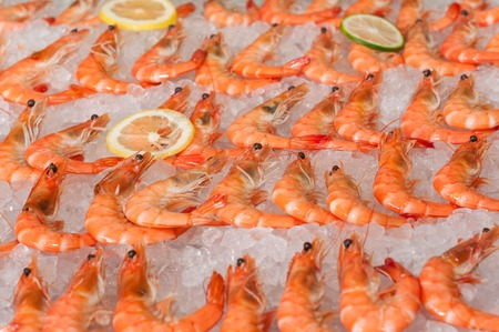 Freshly cooked prawns - shrimp on a bed of crushed  ice