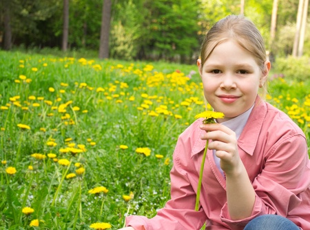 smells: The beautiful girl smells a dandelion on a green field Stock Photo