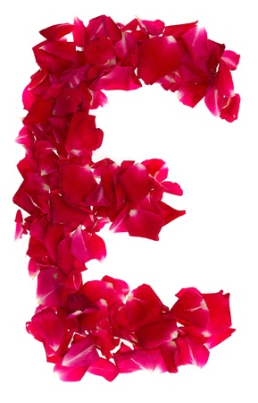 Pink rose petals forming letter E photo