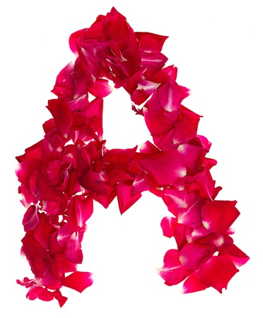 Pink rose petals forming letter A photo