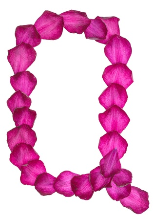 Pink Clematis petals forming letter Q Stock Photo - 10048315