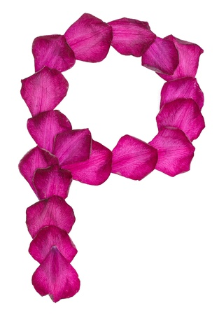 Pink Clematis petals forming letter P Stock Photo - 10048221