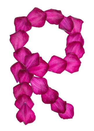 Pink Clematis petals forming letter R Stock Photo - 10048236