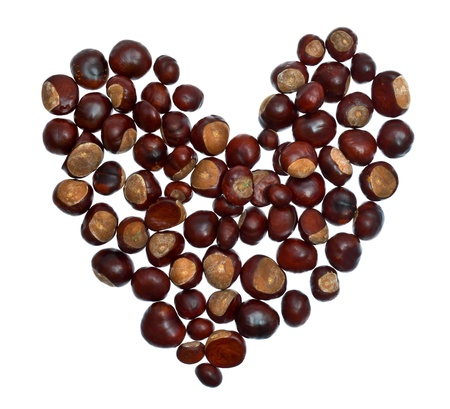whote: heart from chestnuts isolated on whote background