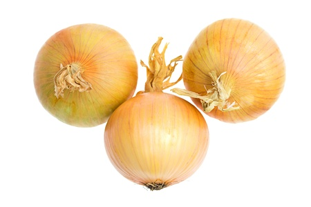 Fresh onions, isolated on a white background photo