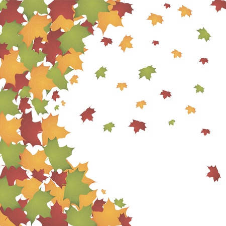 autumn leaves Stock Vector - 10710201