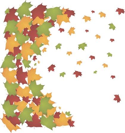 autumn leaves Stock Vector - 10826007