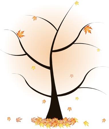 leafage: autumn tree