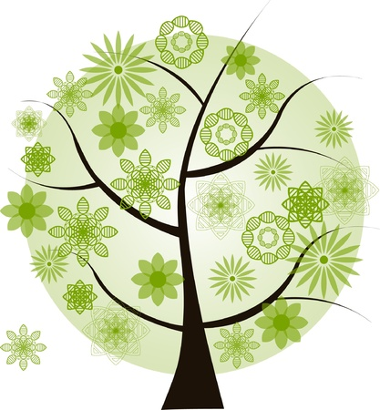 family picture: Beautiful green tree  on a white background