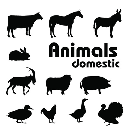 vector domestic animals silhouettes Vector
